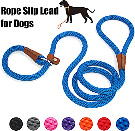 Amazon.com : lynxking Dog Leash Slip Rope Lead Leash Strong Heavy Duty  Braided Rope No Pull Training Lead Leashes for Medium Large Dogs (6', Blue)  : lynxking : Pet Supplies