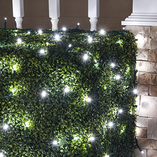 - Set of 100 LED Net Lights -Christmas Net Lights, Outdoor Christmas Decorations, Green Wire (4 x 6 ft, Cool White/Green)