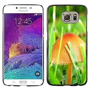 Smartphone Rígido Protección única Imagen Carcasa Funda Tapa Skin Case Para Samsung Galaxy S6 SM-G920 Mushrooms and grass / STRONG
