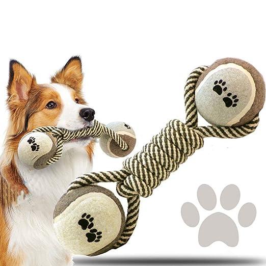 Mascotas juguete molar Cuerda de algodón Tenis mancuernas del ...