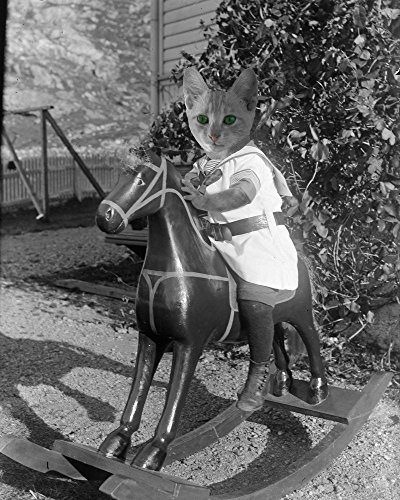 Victorian Tabby KITTEN on a Rocking Horse Altered Kitty Cat boy anthro portrait art print (Horse Rocking Victorian)