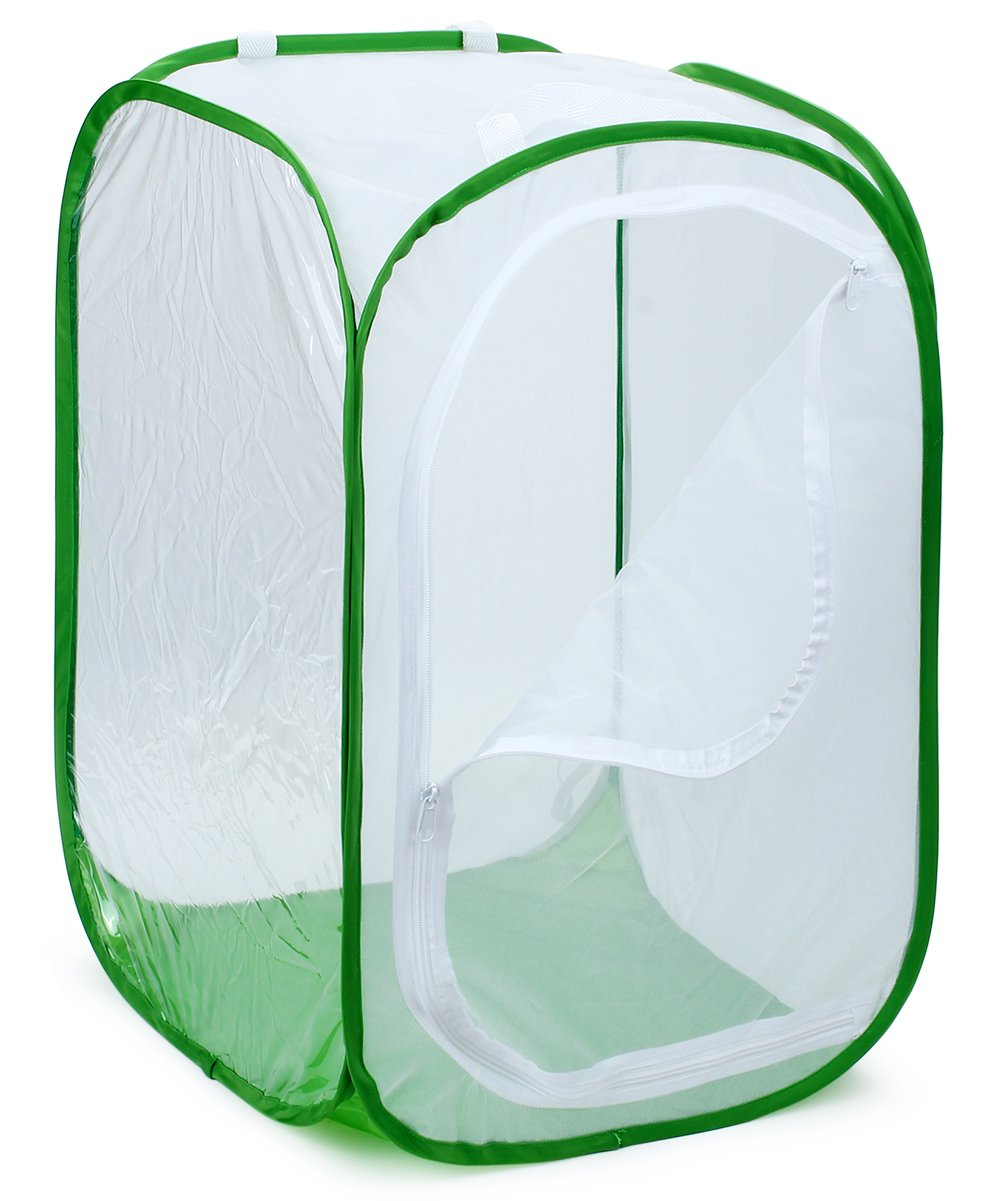 Restcloud 36'' Large Monarch Butterfly Habitat, Giant Collapsible Insect Mesh Cage Terrarium Pop-up 24'' x 24'' x 36'' Tall (White + Green)