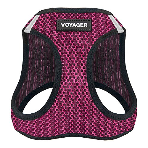 Best Pet Supplies Voyager All Weather No Pull Step-in Mesh Dog Harness with Padded Vest, Fuchsia, Medium by Best Pet Supplies, Inc.