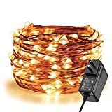 ER CHEN Fairy Lights Plug In, 33Ft/10M 100 LED Starry String Lights Outdoor/Indoor Waterproof Copper Wire Decorative Lights for Bedroom, Patio, Garden, Party, Christmas Tree (Warm White)