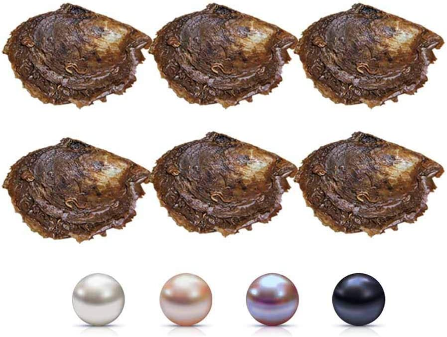 NY Jewelry 7-8mm Saltwater Cultured Pearl in Oyster Mixed Color Jewelry Making Bead Pearl White, Pink, Purple, Black Akoya Round Pearl in Oyster for Pearl Party, Pack for 5 Pcs