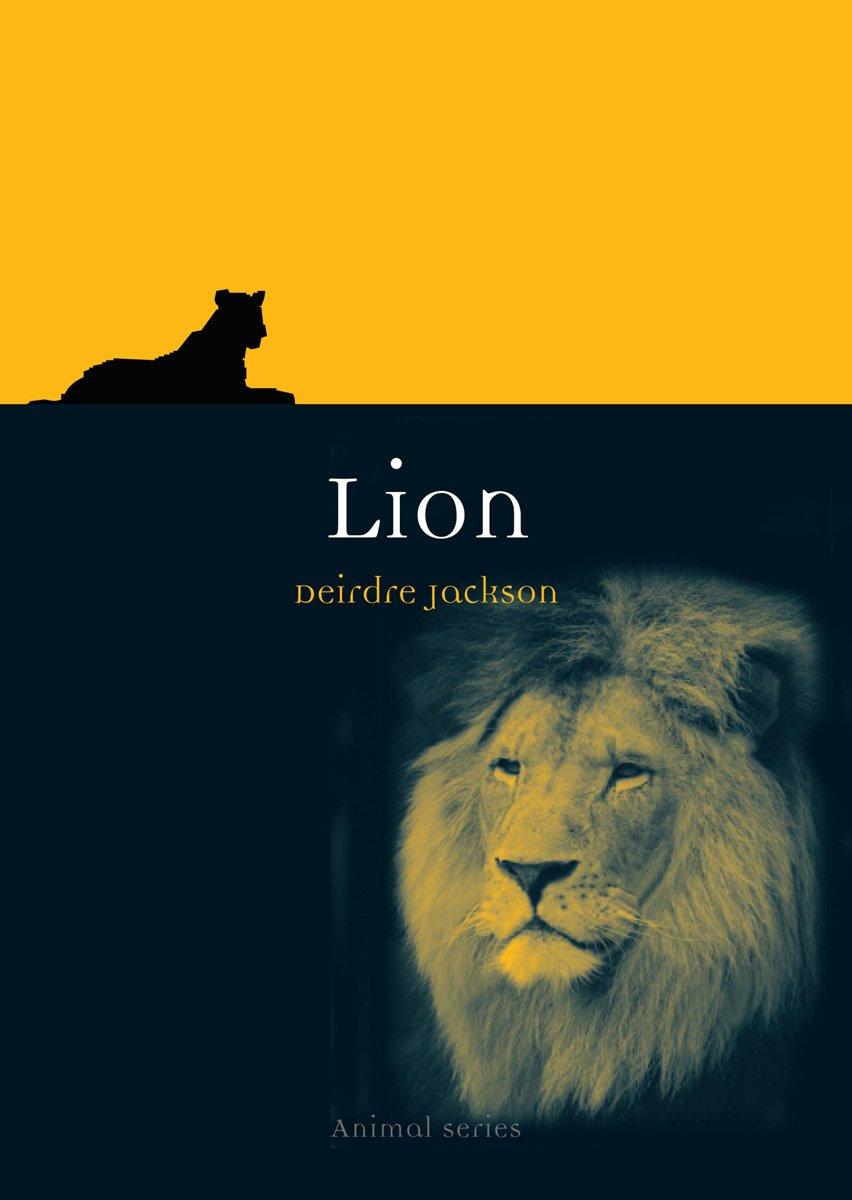 lion-animal
