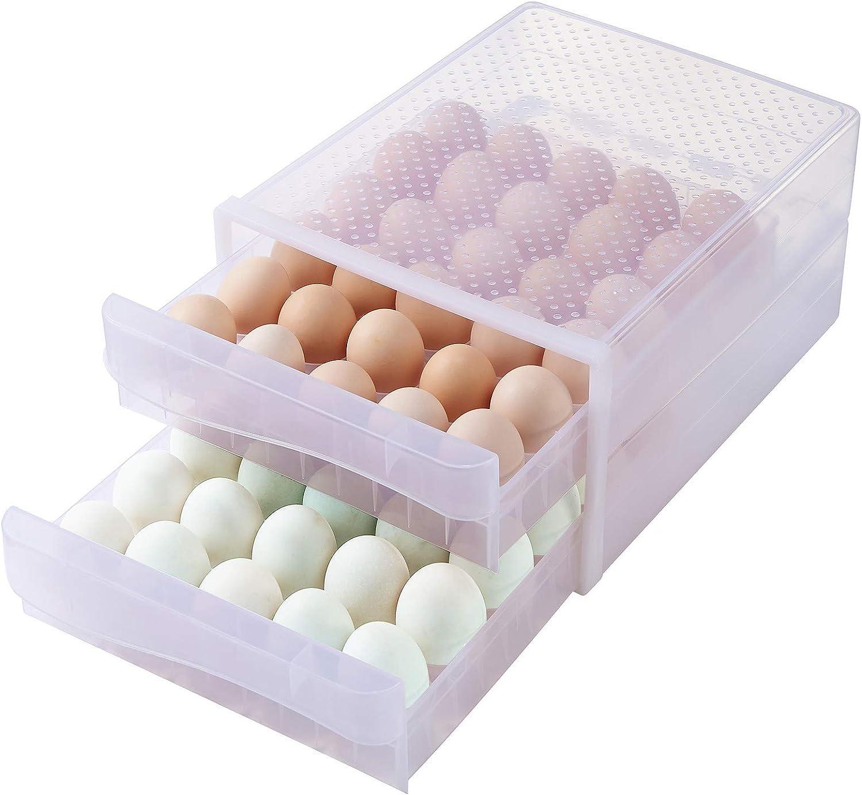 Hershuing 60 Grid Large Capacity Egg Holder for Refrigerator, Household Egg Fresh Storage Box for Fridge, Multi-Layer Chicken Egg Storage Container