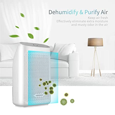 Amazon.com   HODGSON Auto Small Dehumidifier For 200 Sq Ft 700ML Tank  Portable Large Capacity Ultra Quiet Thermo Electric Mini Dehumidifiers For  Home ...