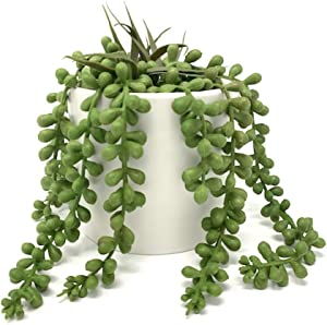 Werandah Artificial Succulent Plants in Pot String of Pearls | Faux Tabletop Greenery | Decor for Indoor Garden Display for Bookshelf, Dorm Rooms Home and Office