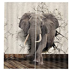 MonkeyJack 3D Scenic Thermal Insulated Grommet Blackout Curtains Blinds for Bedroom Living Dining, 2 Panels