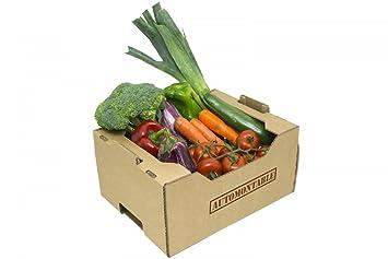 Pack de 10 cajas de cartón para agricultura de canal doble y color marrón. Tamaño