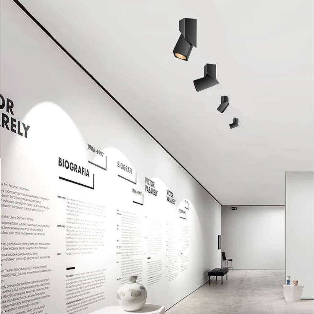 Blanco // Blanco natural l/ámpara de focos Clase de eficiencia energ/ética A+ l/ámpara de techo LED regulable Luz de techo led Foco LED Foco LED para techo Budbuddy 12W Focos de techo