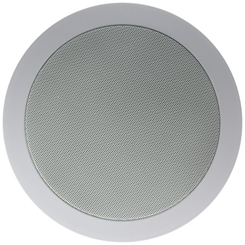 Dual Voice Coil Ceiling Speaker: Ceiling & InWall Speakers Theater Solutions TS650S 6.5
