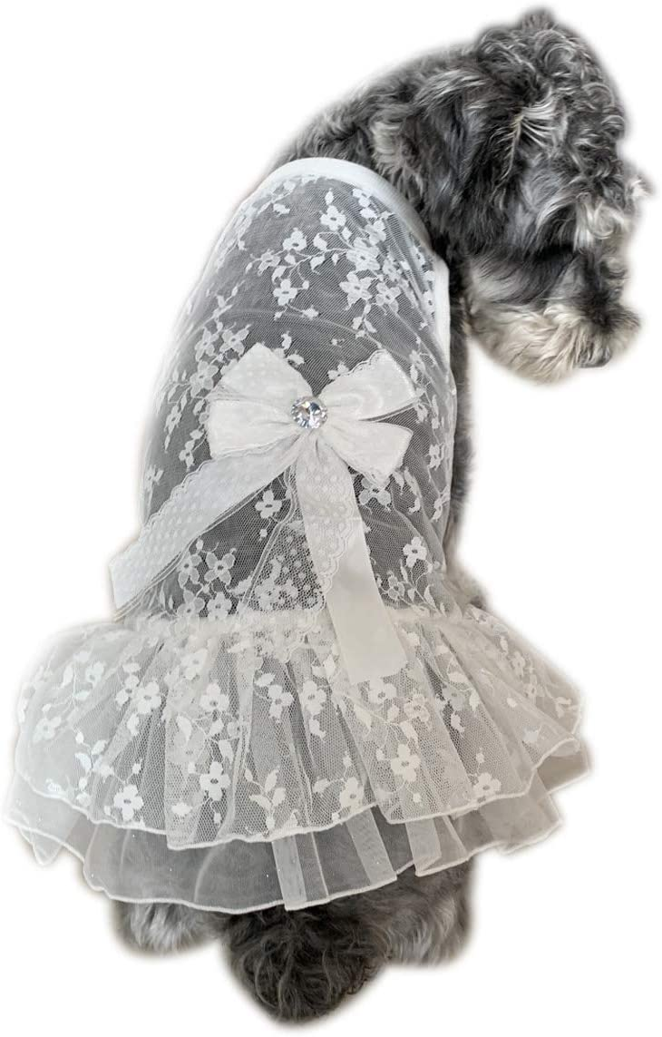 Spitze f/ür Katzen sch/öne Schleife atmungsaktiv BBEART Haustierrock kleine Hunde Prinzessinnenrock Hochzeitskleid Welpen