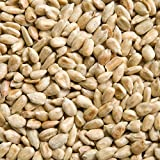 Sunflower Hearts: No-Mess, No-Waste Birdseed