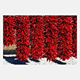 eFrame Fine Art | Red Chili Peppers, New Mexico, Southwest Food Kitchen Art 3 of 4 by Blaine Harrington 16'' x 24'' Print Wall Art for Wall or Home Decor (Black, Brown, White Frame or No Frame)