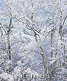 Sierra Club Wilderness Calendar 2020