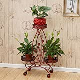 CSQ Wrought Iron Frame, Double Layer 3 Trays Multifunction Flower Stand Living Room Bedroom Study Flower Pot Firm Continental Style 6188CM (Color : B)