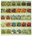 Valley Greene Vegetable Seeds