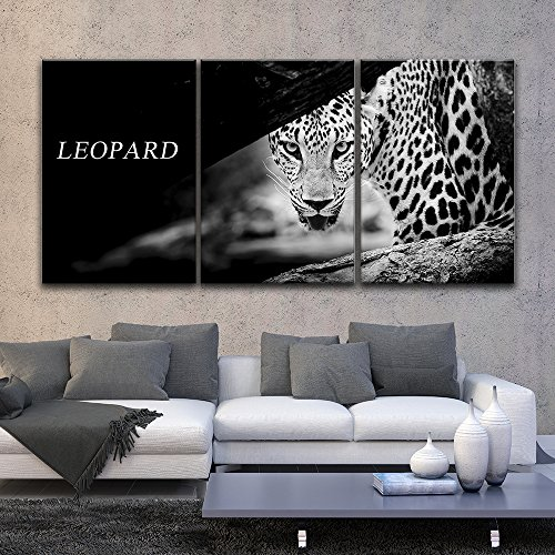 3 Panel Leopard in Black and White Gallery x 3 Panels