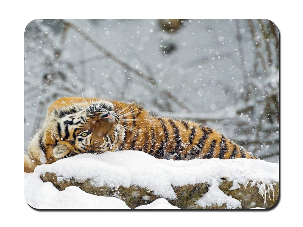 Mouse Pad (8.6x7.1) - Big Amur Tiger On The Snow - Customized Rectangle Non-Slip Rubber Mousepad Gaming Mouse Pad PUPBEAMO BHN-198