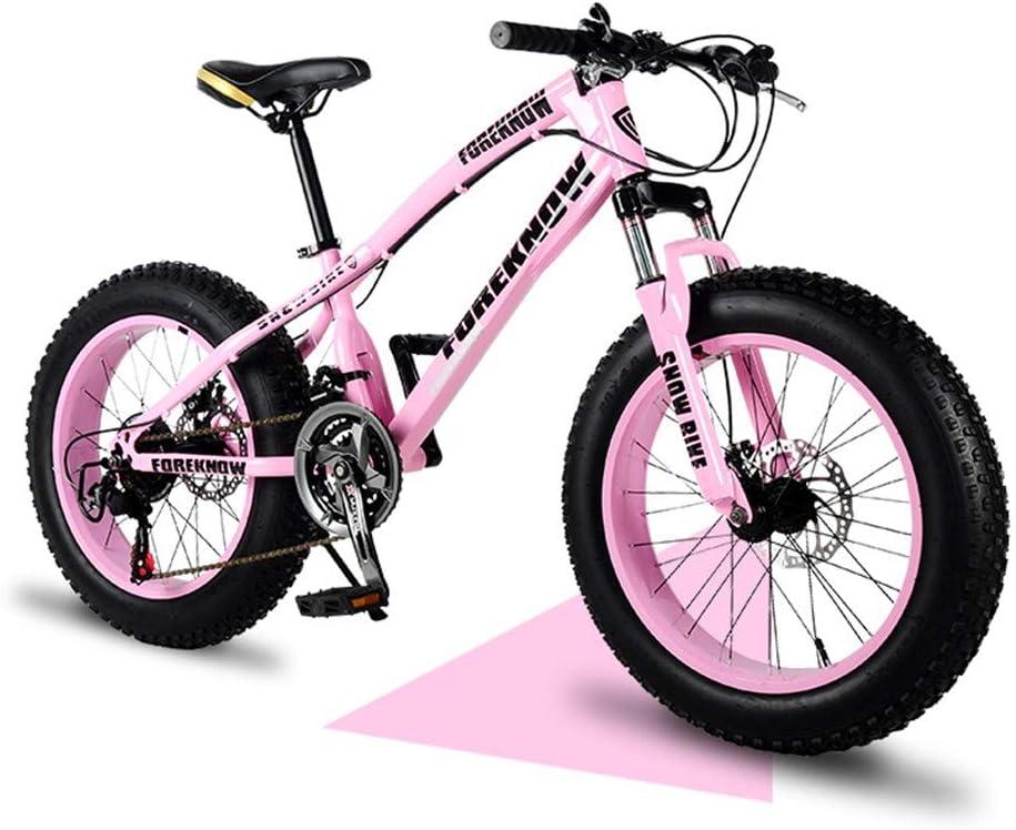 YCHBOS Bicicleta de Montaña para Hombre y Mujer Adultos Fat Tire 20 Pulgadas Bici Off Road Beach Doble Freno Disco Bicicleta de Nieve Suspensión Delantera, 21/27-Stage ShiftD-21 Speed