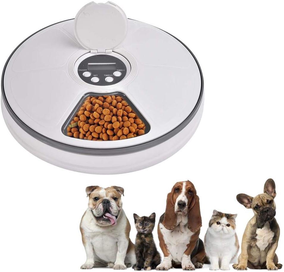 Nishci Dispensador Automático de Comida para Perros y Gatos, Gatos ...