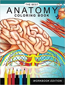 Amazon Anatomy Coloring Book Muscles And Physiology Workbook Edition 9781545202678 DrGary C Karr Books