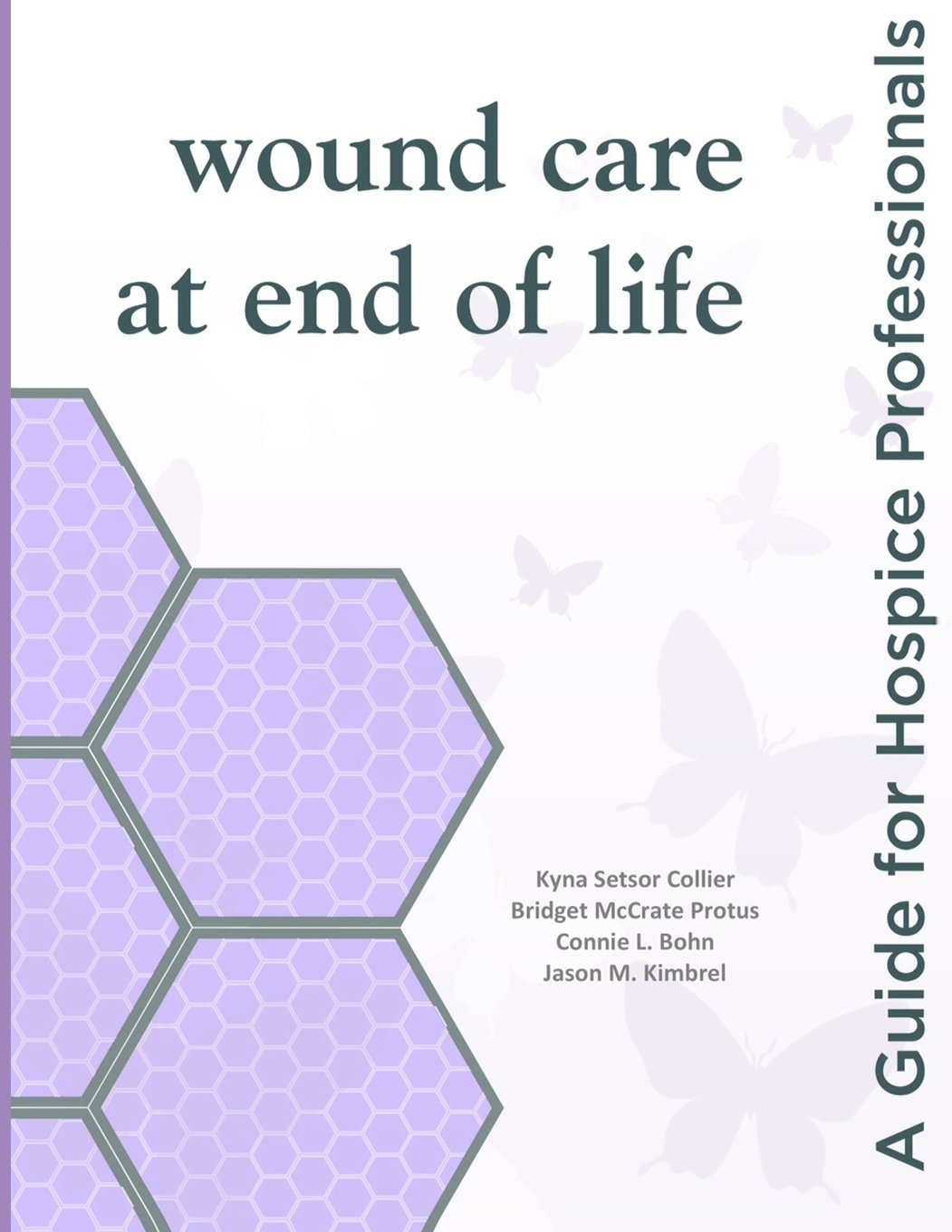 Wound Care at End of Life: A Guide for Hospice Professionals by HospiScript Services