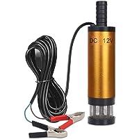 Flintronic Water- en dieselpomp met klemmen, 12 V, 38 mm, elektrische reservepomp, brandstofpomp met afneembaar…