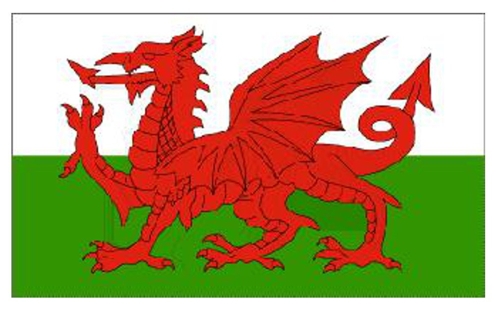LARGE WELSH DRAGON FLAG 8FT X 5FT