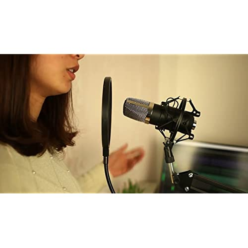 Aokeo AK-70 Professional Studio Live Stream Broadcasting Recording Condenser ...