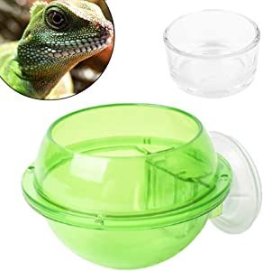 IAFVKAI Suction Cup Gecko Feeder Anti-Escape Amphibians Reptile Food Feeding Bowl for Chameleon Tortoise Gecko Snakes Iguana Lizard