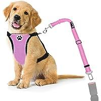 Nasjac Juego de Cinturones de Seguridad para Perros, cinturón de Seguridad para Mascotas con cinturón de Seguridad (XXXS…