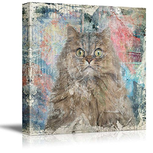Square Cat Series A Cat with Wide Open Eyes on Colorful Grunge Background