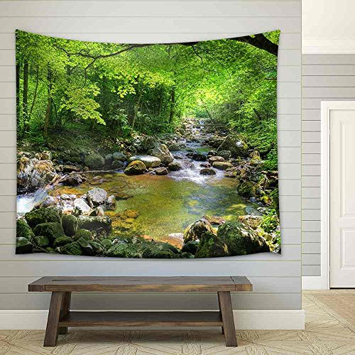 wall26 - Fall Forest Stream Smolny in Russian Primorye Reserve - Fabric Wall Tapestry Home Decor - 51x60 inches