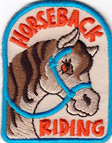 """SOUTHWEST Iron On Embroidered Applique Patch WESTERN /""""HORSEBACK RIDING/"""""""