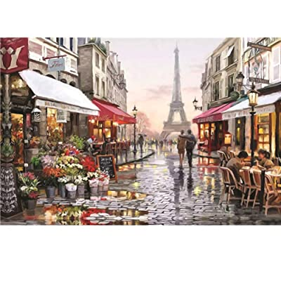 Jigsaw Puzzles 1000 Pieces Large Puzzles for Adults - Hasde Adult Puzzles Difficult Candy House Puzzle Landscape Style Gifts DIY Mural Painting Entertainment Toy (A): Toys & Games