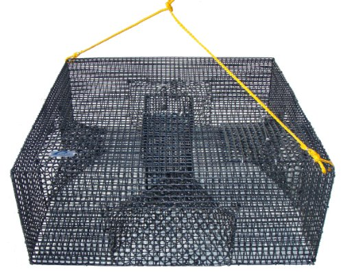 Shrimp Pot - Promar Heavy Duty Shrimp Pot with 1/2-Inch Mesh and 4 Tunnels, 24x24x9-Inch