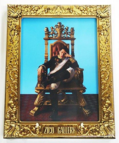ZICO BLOCK Gallery Booklet Sticker product image