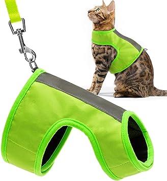 Amazon.com: EXPAWLORER - Arnés reflectante para gato con ...