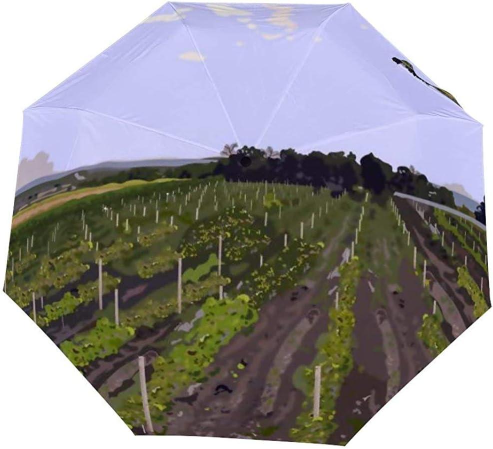 Invertido invertido a Prueba de Viento Vineyard Landscape Otoño Otoño Temporada Paraguas - Paraguas al revés con Mango en Forma de C: Amazon.es: Equipaje