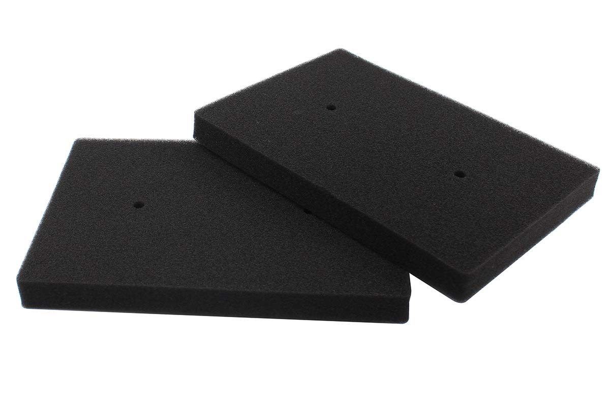 Amazon.com: Pack of 2 Air Cleaner Filter Element for ...