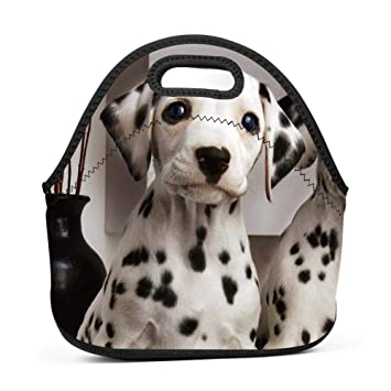 d1c50b22f6e3 Amazon.com: SLBDBDMH Lunchbox Lunch Bag Animal Dalmatians Dogs ...