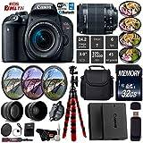 Canon EOS Rebel T7i DSLR Camera 18-55mm is STM Lens + UV FLD CPL Filter Kit + 4 PC Macro Kit + Wide Angle & Telephoto Lens + Camera Case + Tripod + Card Reader - International Version