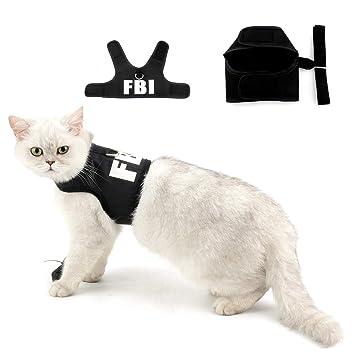 Amazon.com: Arnés y correa a prueba de fugas para gatos, de ...