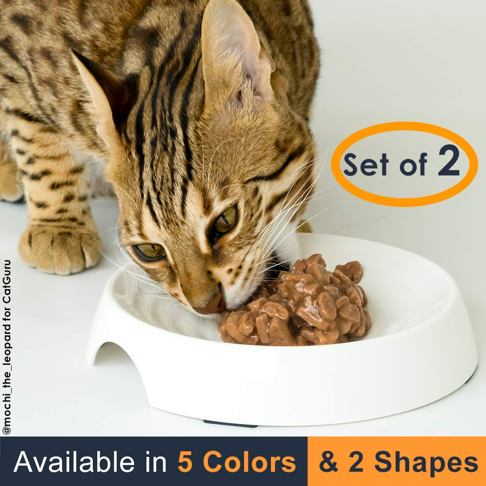 CatGuru Premium Whisker Stress Free Cat Food Bowl Reliefs Whisker Fatigue Wide Cat Dish Non Slip Cat Feeding Bowls Shallow Cat Food Bowls Non Skid Pet Bowls for Cats