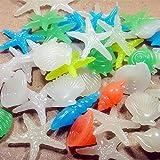 Alrens_DIY(TM)100 Pcs Luminous Conch, Shell, Starfish Pebble Glow In The Dark Artificial Stone Aquarium Fish Tank Decoration, Mixed Color