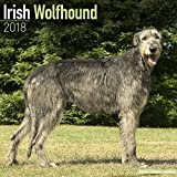 Irish Wolfhound Calendar - Dog Breed Calendars - 2017 - 2018 wall Calendars - 16 Month by Avonside
