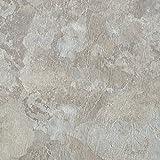 Kitchen Floor Tile Achim Home Furnishings MJVT180210 Majestic Vinyl Floor Tile, 18 x 18 inches, Light Gray Slate, 10-Pack